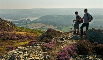 Walking on Conwy Mountain, North Wales