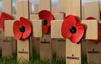 Image shows small wooden crosses with poppies