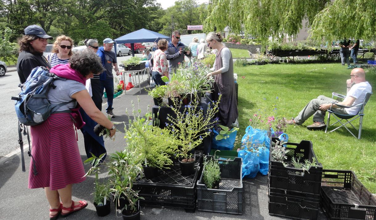 Image shows people admiring plants at Rowen Village Gardens Open Day